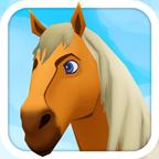马的生活历险记