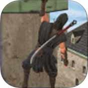 忍者刺客英雄2