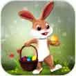 复活节兔子跳