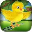 鸟产蛋短跑之谜