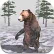 小熊森林3D