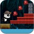 熊猫丛林历险记