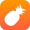 菠萝视频污app