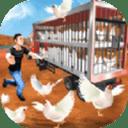 公鸡养殖场游戏